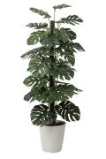 光触媒 光の楽園モンステラ 1.8m【インテリアグリーン 人工観葉植物】(403a350)