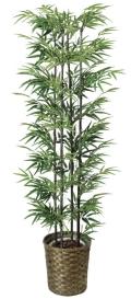 光触媒 光の楽園黒竹 1.6m【インテリアグリーン 人工観葉植物】(404a300)