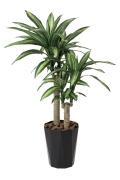 光触媒 光の楽園幸福の木1.1m【インテリアグリーン 人工観葉植物】(406a180)