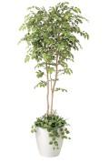 光触媒 光の楽園 マウンテンアッシュ植栽付 高さ 1.8m 【インテリアグリーン 大型 人工観葉植物】 (408g530)