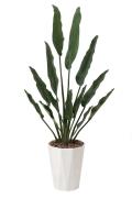 光触媒 光の楽園トラベラーズパーム1.55m【インテリアグリーン 人工観葉植物】(411a300)