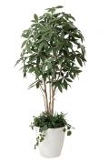 光触媒 光の楽園パキラ 植栽付 1.8m【インテリアグリーン 人工観葉植物】(412f500)