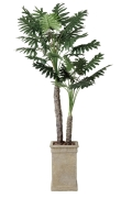 光触媒 光の楽園セローム2.0m【インテリアグリーン 人工観葉植物】(415f600)