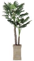 光触媒 光の楽園 セロームW 高さ 2.0m 【インテリアグリーン 大型 人工観葉植物】 (415g620)