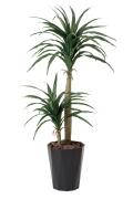 光触媒 光の楽園ドラセナコンシンネ1.3m【インテリアグリーン 人工観葉植物】(427a160)