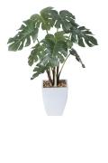 光触媒 光の楽園モンステラポット【インテリアグリーン 人工観葉植物】(※ラッピング不可)(433a60)
