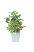 光触媒 光の楽園ポトスポット【インテリアグリーン 人工観葉植物】(434a20)