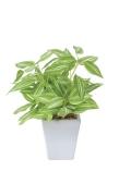 光触媒 光の楽園トラディスカンティアポット【インテリアグリーン 人工観葉植物】(435a20)