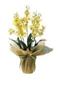 光触媒 光の楽園オンシジュームS【アートフラワー 造花 】(455a40)