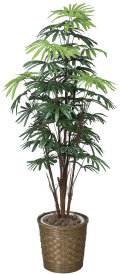 光触媒 光の楽園シュロチク 高さ 1.6m【インテリアグリーン 大型 人工観葉植物】(500e350)