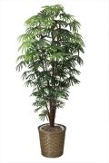 光触媒 光の楽園シュロチク1.8m【インテリアグリーン 人工観葉植物】(501f570)