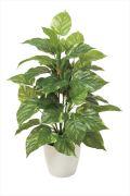 光触媒 光の楽園フレッシュポトスM【インテリアグリーン 人工観葉植物】(517a75)