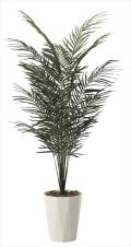 光触媒 光の楽園アレカパーム1.9m【インテリアグリーン 人工観葉植物】(602a300)