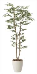 光触媒 光の楽園トネリコ1.6m【インテリアグリーン 人工観葉植物】(603a320)