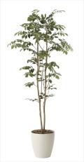 光触媒 光の楽園マウンテンアッシュ 高さ 1.6m【インテリアグリーン 大型 人工観葉植物】(604a270)