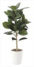 光触媒 光の楽園ゴムの木90【インテリアグリーン 人工観葉植物】(614e130)