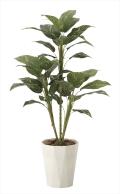 光触媒 光の楽園フィロ90【インテリアグリーン 人工観葉植物】(620a120)