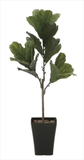 光触媒 光の楽園カシワバゴム1.3m【インテリアグリーン 人工観葉植物】(621a230)