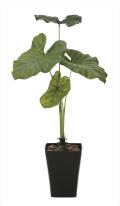 光触媒 光の楽園タロリーフ90【インテリアグリーン 人工観葉植物】(623a150)