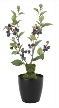 光触媒 光の楽園ブルーベリーベア【インテリアグリーン 人工観葉植物】(626a40)