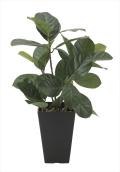 光触媒 光の楽園パンの木【インテリアグリーン 人工観葉植物】(636a50)
