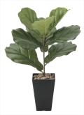 光触媒 光の楽園カシワバゴム【インテリアグリーン 人工観葉植物】(638a45)