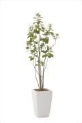 <2017新作>光触媒 光の楽園アーバンブランチツリー1.9m【インテリアグリーン 人工観葉植物】(711a450)