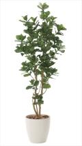 <2017新作>光触媒 光の楽園クルシア1.6m【インテリアグリーン 人工観葉植物】(719a360)