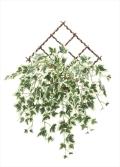 <2017新作>光触媒 光の楽園壁掛班入アイビー【インテリアグリーン 人工観葉植物】(740a35)