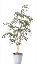 光触媒 光の楽園ウィービングフィカス 高さ 1.8m【インテリアグリーン 大型 人工観葉植物】(802a320)