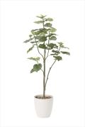 <2018新作>光触媒 光の楽園ウンベラータツリー1.8m【インテリアグリーン 人工観葉植物】(805a430)