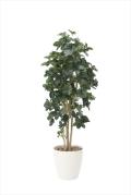 光触媒 光の楽園シェフレラ 高さ 1.8m【インテリアグリーン 大型 人工観葉植物】(812a400)