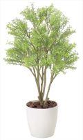 光触媒 光の楽園 ミニメープル 高さ 70cm 【インテリアグリーン 人工観葉植物】 (830g95)