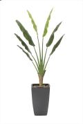 光触媒 光の楽園アートトラベラーズパーム1.8m【インテリアグリーン 人工観葉植物】(901a600)