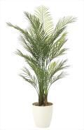 <光触媒加工なし>光の楽園アレカパーム 高さ 1.5m【インテリアグリーン 大型 人工観葉植物】(907a340)