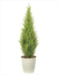 <光触媒加工なし>光の楽園ゴールドクレスト1.3m【インテリアグリーン 人工観葉植物】(910a280)