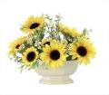 光触媒 光の楽園エミリーサンフラワー【アートフラワー 造花 】(919a50)