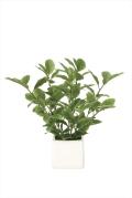光触媒 光の楽園ミニリーフ【インテリアグリーン 人工観葉植物】(936a25)
