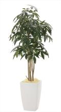 光触媒 光の楽園アーバンパキラ1.8m【インテリアグリーン 人工観葉植物】(941a600)