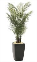 光触媒 光の楽園アーバンアレカパーム1.7m【インテリアグリーン 人工観葉植物】(945a580)