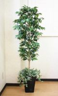 光触媒 光の楽園アルデシア(下草付)1.5m【インテリアグリーン 人工観葉植物】(acn051)