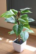 光触媒 光の楽園フレッシュポトスポット【インテリアグリーン 人工観葉植物】(acn061)