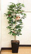 光触媒 光の楽園アルデシア(フクロウ付き)1.2m【インテリアグリーン 人工観葉植物】(acn063)