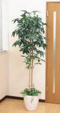 光触媒 光の楽園パキラ(下草付)1.8m【インテリアグリーン 人工観葉植物】(acn088)