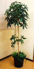 光触媒 光の楽園 パキラツリー 高さ 1.8m【インテリアグリーン 大型 人工観葉植物】(acn177)