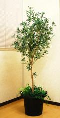 光触媒 光の楽園 オリーブ 高さ 1.6m【インテリアグリーン 大型 人工観葉植物】(acn180)