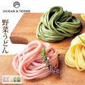 野菜うどんセットEA063