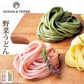 野菜うどんセットFA064