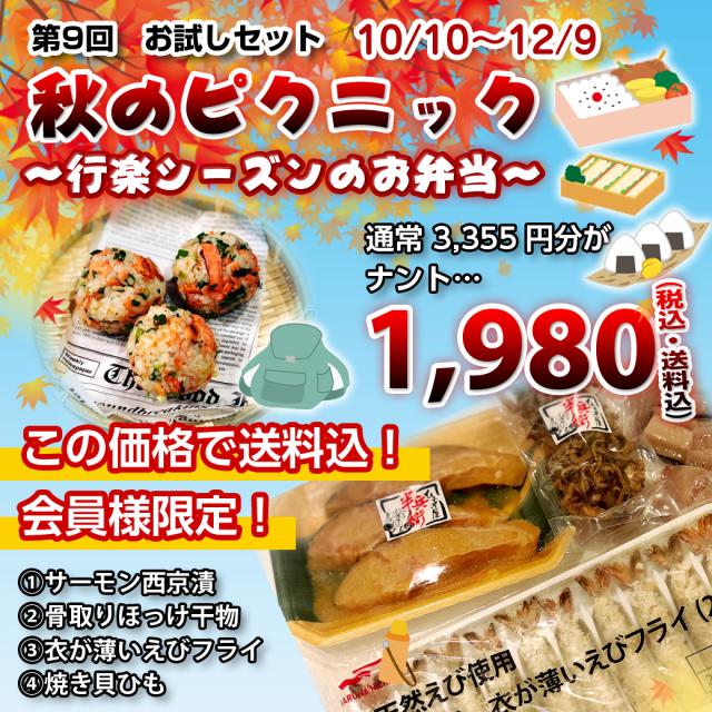 【送料込/会員限定/同梱可能】 第9回お試しセット~秋のピクニック・行楽シーズンのお弁当~