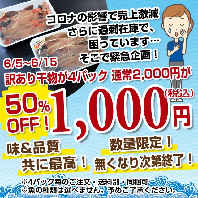 【緊急企画/在庫SALE/ネット限定】 訳あり干物 4パック 1,000円